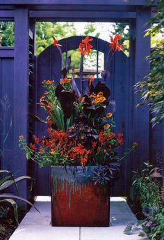 Gorgeous planter and violet gate. // Great Gardens & Ideas //