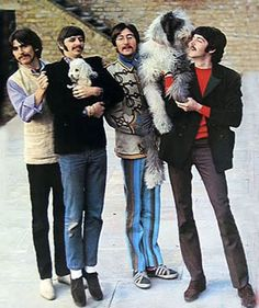 The Beatles Martha, Paul's beloved Old English Sheepdog being hoisted up by John, cuddling Paul, meanwhile Ringo is on his tippytoes nursing a smaller version.