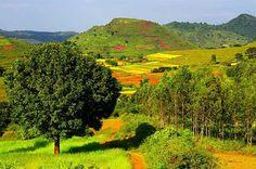 Araku Valley in Andhra Pradesh State is a beautiful summer destination