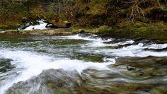 Wishkah River at Parker Creek