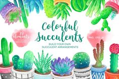 Watercolor Succulents & Cacti by Peachycottoncandy on @creativemarket