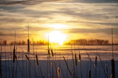 Prairie Sunset by MR|photography, via Flickr