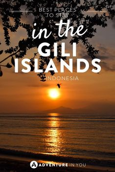Looking for the best places to stay while in the Gili Islands? We've compiled a list of the best places to stay on Gili Trawangan, Gili Air and Gili Meno. Backpacking South America, Backpacking Asia, Gili Islands Bali, Gili Air, Vacation Trips, Vacation Destinations, Vacations, Travel Plan, Travel Tips