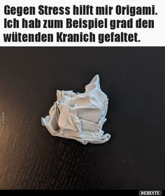 Wtf Funny, Funny Cute, Hilarious, Good Humor, Quotes And Notes, Just Smile, Happy Quotes, Origami, Haha