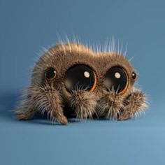 Lucas the Cute Little Spider In 'Captured'