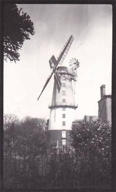 SUTTON WINDMILL STALHAM NORFOLK c1930 NORFOLK BROADS | eBay