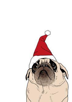 Pug Santa.