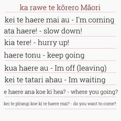 Classroom Behavior, Classroom Language, Teaching Career, Teaching Resources, Teaching Ideas, Home Learning, Early Learning, Waitangi Day, Maori Words