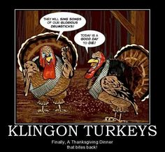 Happy Thanksgiving to all my fellow science fiction friends. Trekking Quotes, Thanksgiving Jokes, Star Trek Series, Nerd Humor, Nerd Memes, Funny Memes, Demotivational Posters, Star Trek Universe, Nerd Love