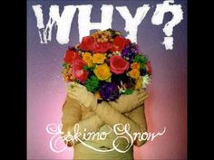 Why? - One Rose