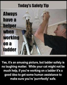 We laughed when we first saw this picture, but we wanted to make a point - ladders can be dangerous, so it's a good idea to have help. (PS: Thanks to Amazing Pictures for letting us raid their Facebook page...)