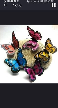 Butterflies, Drawings, Art, Butterfly, Bowties, Papillons, Caterpillar