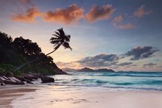 Sunset at beautiful Anse Severe on La Digue Island. I had to run around a bit to get the camera in the right position to capture the palm tree between those lines of clouds. Beach Landscape, Landscape Photos, Landscape Photography, Les Seychelles, Seychelles Islands, Costa, Painting Edges, Travel Couple, Stretched Canvas Prints