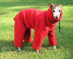 Polartec 300 weight Italian Greyhound Body Suit - Malden Mills small dog suit