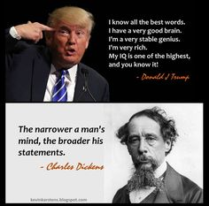Such a fitting quote for the smallest and most narrow of minds, the Grand Exalted Poobah Drumpf! Satire, Caricatures, Political Views, Political Memes, Humor, Wisdom Quotes, Quotes Quotes, Cool Words, Funny