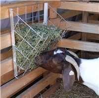 Harvey needs to make me several Metal Hay Basket