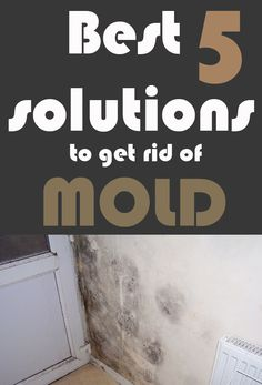 Best 5 solutions to get rid of mold - Cleaning Ideas - Make your cleaning ritual easier Diy Home Cleaning, Cleaning Recipes, House Cleaning Tips, Diy Cleaning Products, Cleaning Solutions, Cleaning Hacks, Cleaning Mold, How To Remove, How To Get