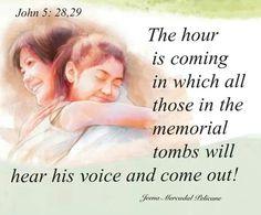 download jw bible