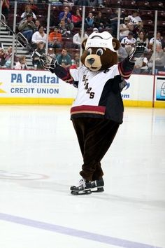 Hershey Bears Coco getting a mascot makeover this fall