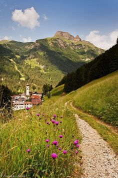 Country lane (Val di Fassa, Dolomite Mountains, Italy) by Francesco Damin