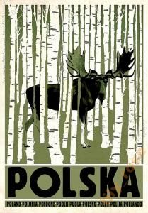 POLSKA Poland Polen Pologne Pooln Puola Polonia Polsko - Tourist Promotion poster Poster from new series of posters promoting Poland Birchwood, Elk, Moose on poster Check also other posters from PLAKAT-POLSKA series Original Polish poster Old Poster, Poster Ads, Poster Prints, Polish Posters, Graphisches Design, Plakat Design, Tourism Poster, Art Graphique, Simple Poster