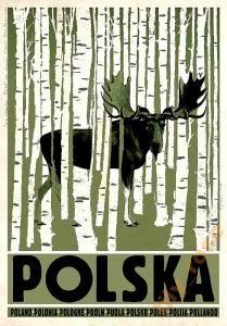 POLSKA Poland Polen Pologne Pooln Puola Polonia Polsko - Tourist Promotion poster Poster from new series of posters promoting Poland Birchwood, Elk, Moose on poster Check also other posters from PLAKAT-POLSKA series Original Polish poster Old Poster, Retro Poster, Poster Ads, Poster Prints, Polish Posters, Plakat Design, Simple Poster, Graphisches Design, Tourism Poster