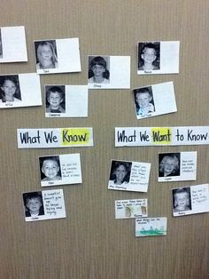Document kwl questions with photo cards with space for post-its Portfolio Kindergarten, Kindergarten Inquiry, Inquiry Based Learning, Project Based Learning, Early Learning, Reggio Classroom, New Classroom, Preschool Classroom, School Displays