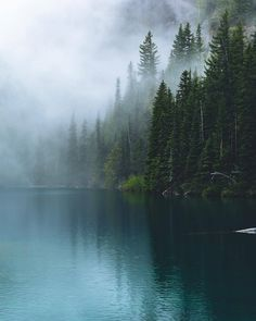 Calm alpine simplicities after a rainy and thunderous night at the lake. Forest Photography, Landscape Photography, Travel Photography, Beautiful World, Beautiful Places, Landscape Pictures, Nature Pictures, Pacific Northwest, Belle Photo