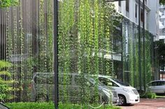 using nature to create car parks - Google Search