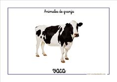 Fichas de infantil: Vocabulario básico con animales de granja Learn English, Teaching Kids, Cow, Learning, Creative, Animals, Child Psychotherapy, Preschool, Play Therapy