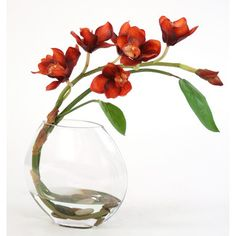 Distinctive Designs Waterlook® Silk Orchid Spray with Tropical Leaves in Glass Disk Vase