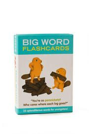 Big Word Flash Cards