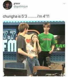 K Pop, Kim Chungha, Nct Johnny, Nct Life, Funny Kpop Memes, Kpop Guys, Day6, Taeyong, K Idols