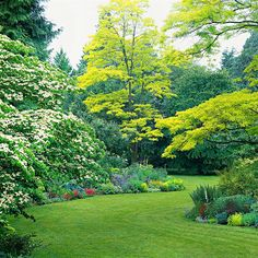 Take It to the Next Level-Select trees with colorful foliage (such as tricolor beech or golden locust, shown here) or flowers to extend your garden's visual appeal up into the air. For the biggest impact, use trees that echo one of the tones in the plantings below them
