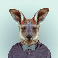 Julie de batom: Zoo portraits: animais fofos (e na moda!)