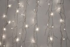 okay 1. i love fairy lights with a burning passion  2. i can't set a profile pic and its IRRITATING
