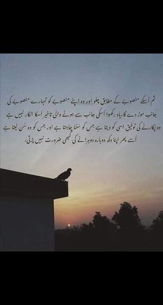 Poetry Quotes In Urdu, Sufi Quotes, Islamic Messages, Islamic Quotes, Cute Love Quotes, Deep Words, Latest Technology, People Quotes, Writings