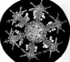 One of the first ever photographs of snowflakes 1885