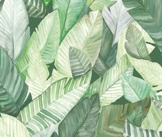Banana leaves are layered atop one another in this lush watercolour wallcovering from Spain's Coordonné. The pattern is digitally printed on non-woven, U/V-resistant paper.coordonne.es