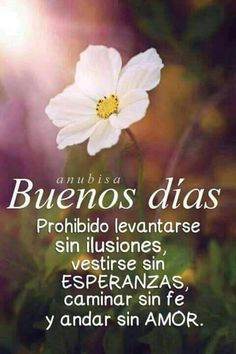 Frases - dichos y refranes Good Day Quotes, Quote Of The Day, Daily Quotes, Feliz Domingo Gif, Budget Template, Good Morning Good Night, Dating After Divorce, Bible Verses Quotes, Spanish
