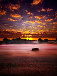 sunset, Wisconsin farmland