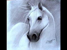 Pintando Um Cavalo- Pintura em Tecido - YouTube