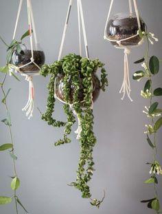 create modern macrame hangers for indoor and outdoor plants