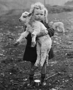 New Testament, Nursery Rhymes, Vintage Photos, Lamb, Pure Products, Animals, Animales, Animaux, Animal