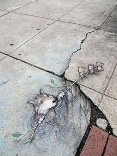 Artists Lights Up City Streets With Amazing Chalk Art Featuring Cute Animals and a Green Monster!
