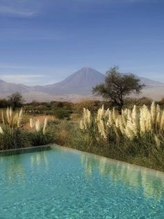 Vista da Piscina do Hotel Tierra Atacama