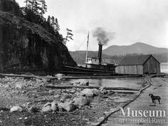 View of wharf at Rock Bay (unknown year) Photographer: Henry Twidle. Mrs. J.H. Dalton Collection - CR Museum