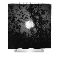 Moon Shower Curtain featuring the photograph Hiding by Marnie Patchett