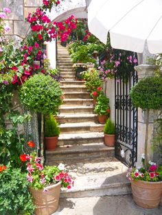 the redo for my walkway..stone steps, iron gate...