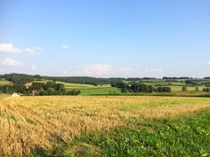 In den Stauden (Schwaben) Felder, Vineyard, Outdoor, Shade Perennials, Heaven, Landscape, Outdoors, Outdoor Games